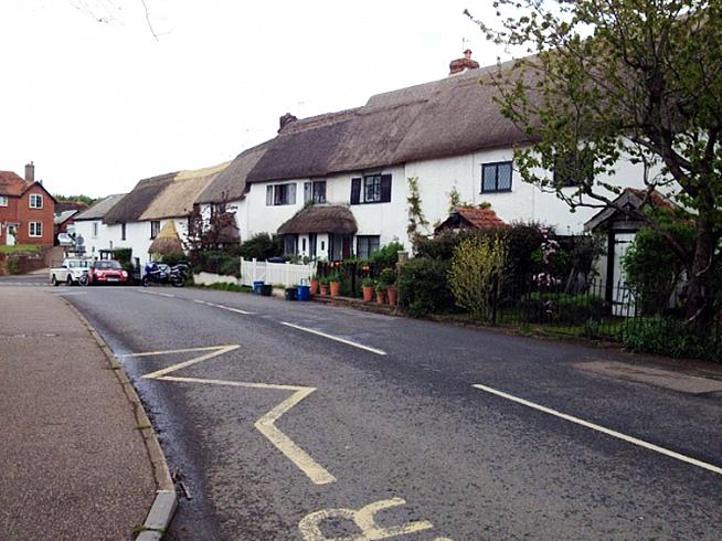 Photogenic thatch in Broadclyst.
