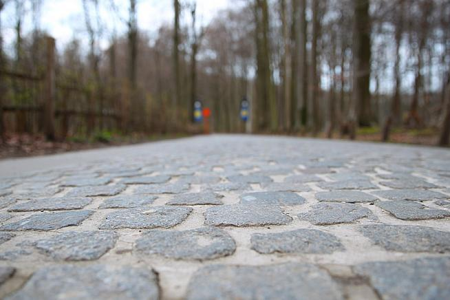 A close up of those smooth Flemish cobbles. Photo: Sportograf
