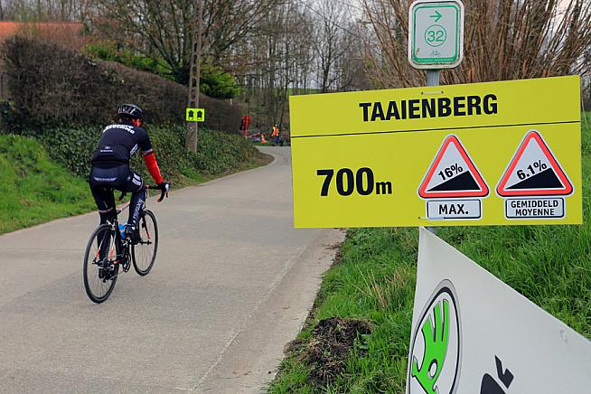 Approach to the Taaienberg. Photo: Sportograf