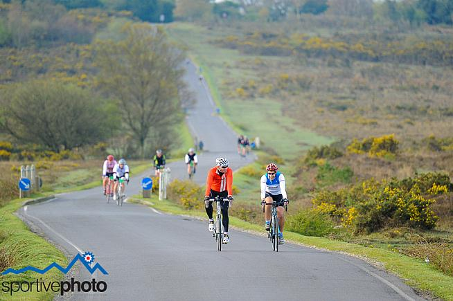 The New Forest is popular among cyclists but the feeling is not always mutual.