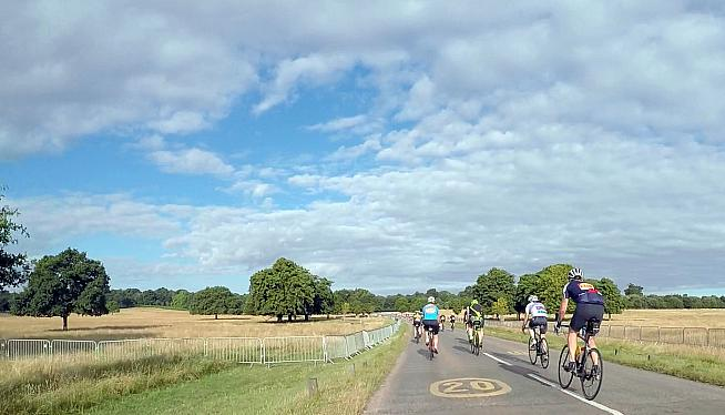 Rolling through a sunny Richmond Park.