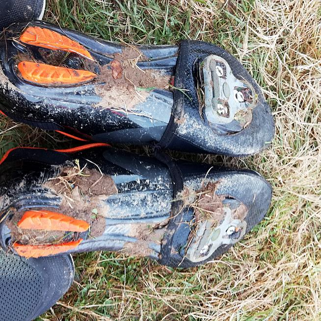 Andy's cloven hooves provide excellent traction on a variety of surfaces.