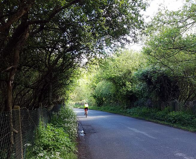 The emerald lanes of Surrey.
