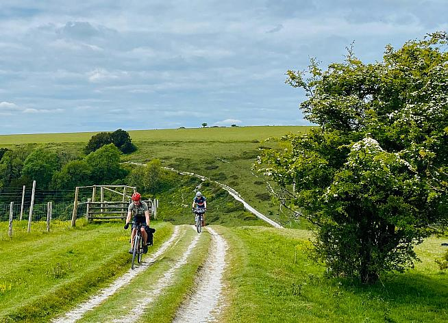 The South Downs Way is a classic route along chalk trails.