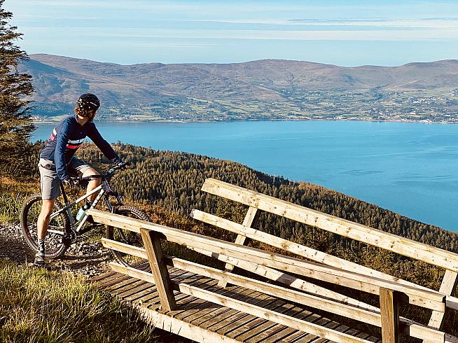 Overlooking Carlingford Lough on the Rostrevor red trail.